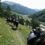 Pont de Camps vallée d'Ossau