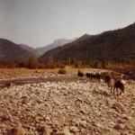 passage de rio