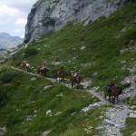 Descente vers Cézy Vallée d'Ossau