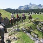 transhumance en vallée d'Ossau vers les estives d'altitude