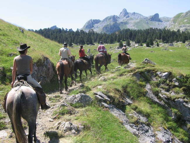 Prochain départ: Transhumance en vallée d'Ossau