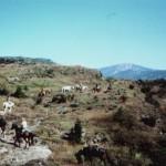Sierra de Cancias