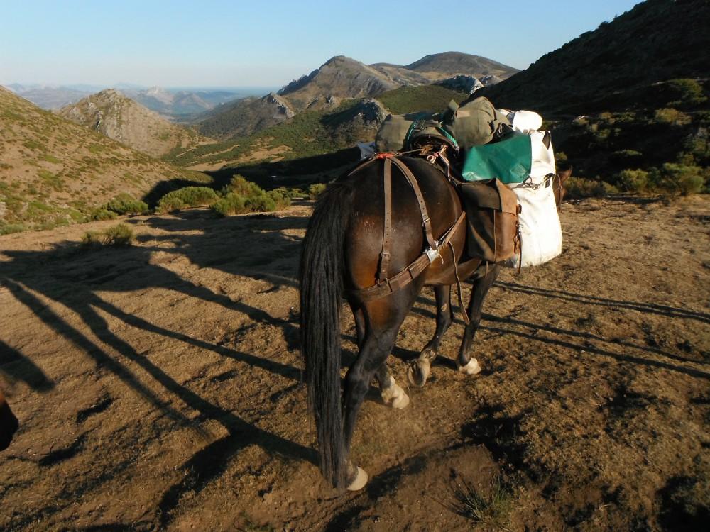 vers le col des Aragones (5)