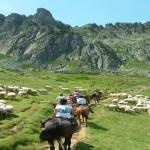 Parc National des Pyrénées Occidentales